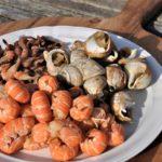 foodtruck met vis schelpdieren